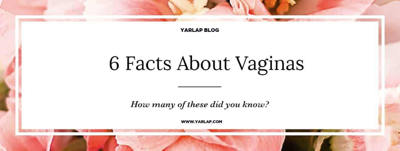 6 Fun Facts about Vaginas
